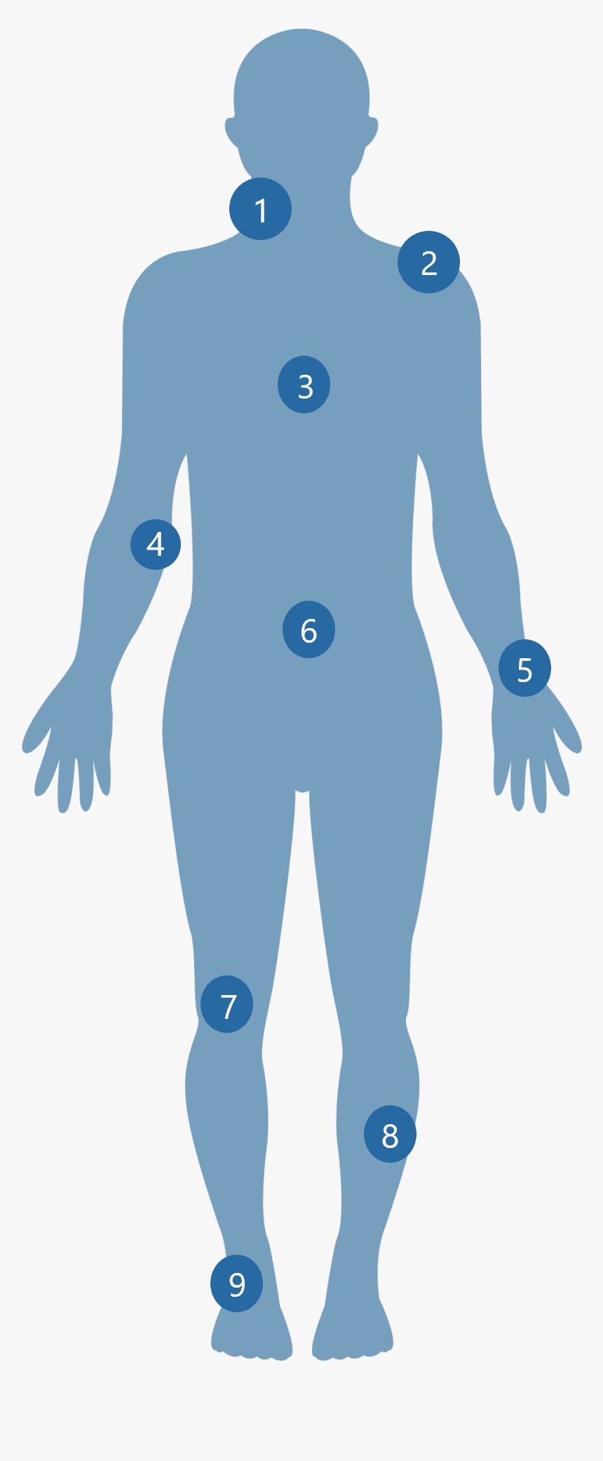 11-119289_human-body-vector-transparent-healthy-body-png-png